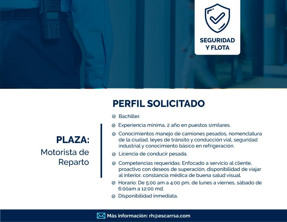 Plazas-Hielo-Polar-MOTORISTA-DE-REPARTO
